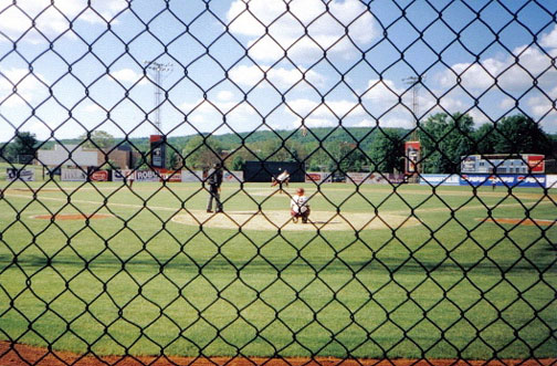 baseballfencej.jpg